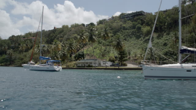 view of the boats and hills on the coastline / saint lucia, carribbean - st lucia stock videos & royalty-free footage