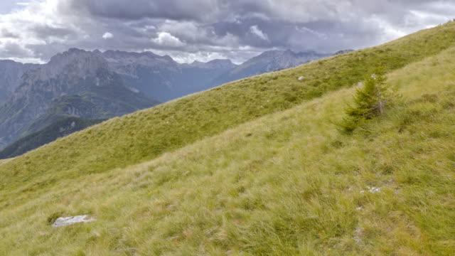luftaufnahme der trübe berge in der ferne von den grünen bergwiese - gebirgskamm stock-videos und b-roll-filmmaterial