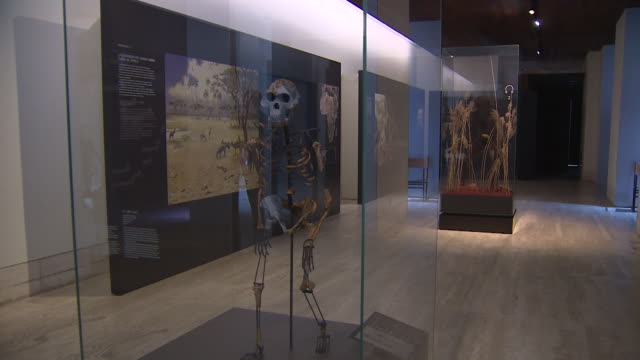 vidéos et rushes de view of the empty galleries at the national archaeological museum during the coronavirus pandemic. - antique