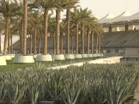 view of the formula one circuit grandstand seen from a landscaped garden full of palm trees and cactuses - cactus icon stock videos & royalty-free footage