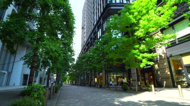 vidéos et rushes de vue du nakadori vert frais à marunouchi, tokyo - végétation verdoyante