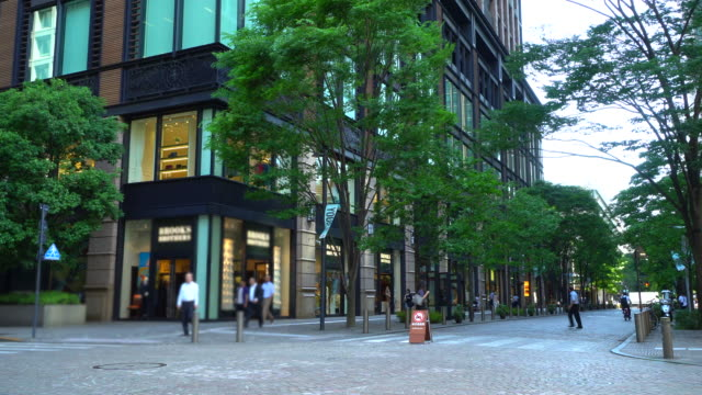 view of the fresh green nakadori in marunouchi, tokyo - town stock videos & royalty-free footage