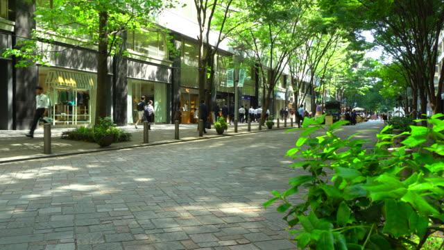 東京・丸の内の新緑中通りの眺め - 青々とした点の映像素材/bロール