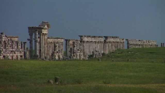 view of the great colonnade which is one of the longest in the roman world. the colonnade makes up the city's cardo maximus. apamea was completely... - 長さ点の映像素材/bロール