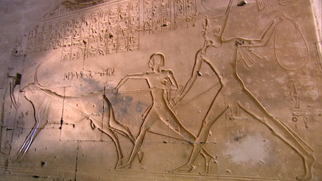 view of the 'lassoing the great bull' relief, showing 19th-dynasty pharaoh seti i and his son ramses ii roping a bull at the temple of abydos. - pharaoh stock videos & royalty-free footage
