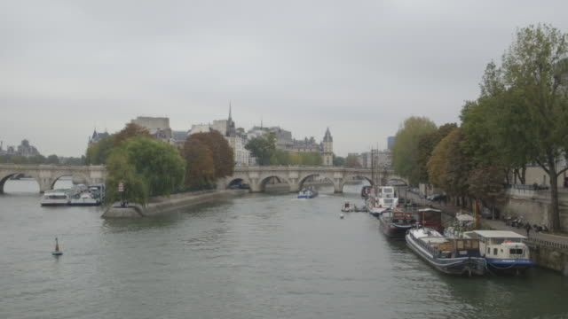 View of the Île de la Cité and Pont Neuf on the River Seine in Paris' city centre, France.
