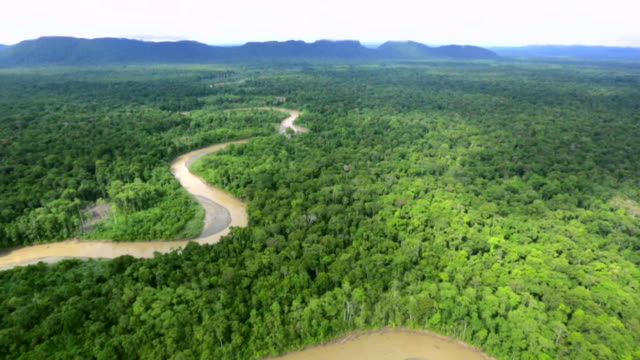 view of the mai-ama river stream in the forest, papua new guinea - papua new guinea stock videos & royalty-free footage