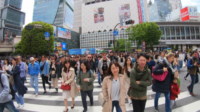 pov view of the shibuya crossing intersection - road signal stock videos & royalty-free footage