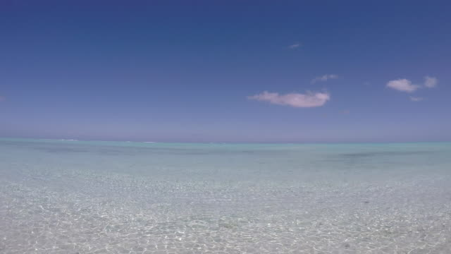 view of the transparent sea of the bora bora lagoon - tahitian culture stock videos & royalty-free footage