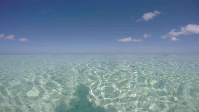 vídeos de stock e filmes b-roll de view of the transparent sea of the bora bora lagoon, view above and under the sea - cultura polinésia