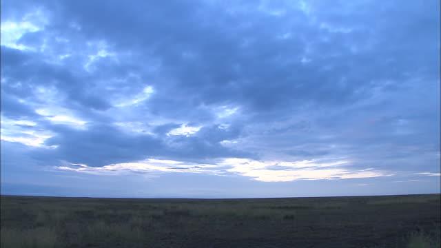 vídeos de stock e filmes b-roll de view of the wide open plain at serengeti national park, tanzania - savana