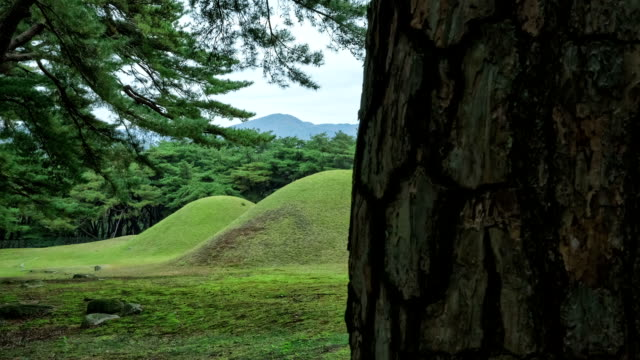 view of three royal tombs(korea historic place) in mt. nam in gyeongju - north gyeongsang province stock videos and b-roll footage