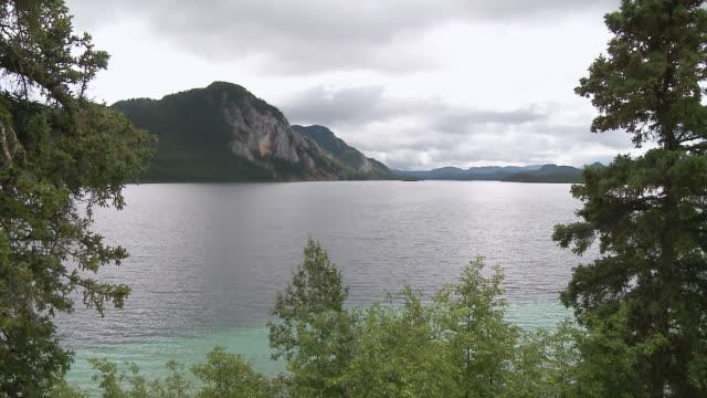 WS View of Through trees over Coghlan Lake / Yukon, Canada