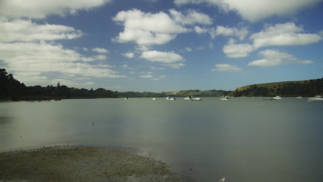 WS T/L View of tide in estuary / Kaipara, Auckland, New Zealand