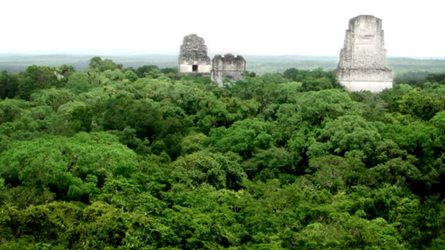 view of tikal, guatemala - guatemala stock videos & royalty-free footage
