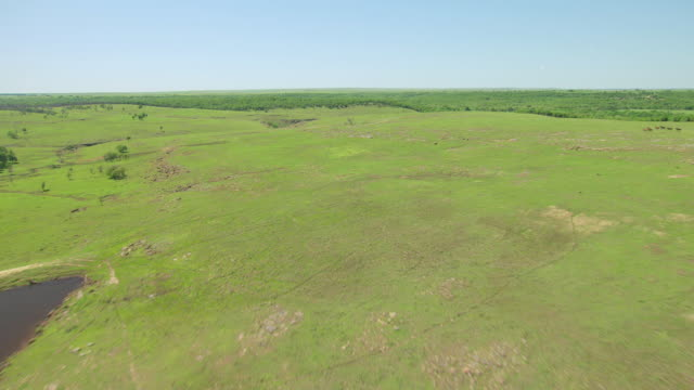 ws aerial view of timbers and reveal prairie in osage county / oklahoma, united states - prärie stock-videos und b-roll-filmmaterial
