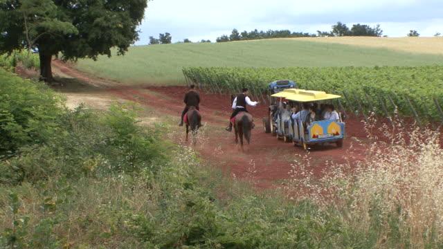 ws view of tourist train visiting vineyards / koroniki, croatia - tourist train stock videos and b-roll footage