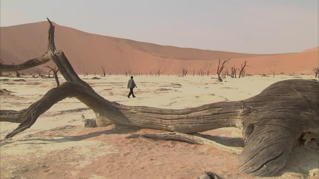 WS View of tourist walking in Deadvlei / Sossusvlei, Namibia