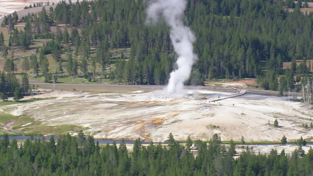 ws aerial view of tourist watching old faithful grotto geyser with trees / wyoming, united states - old faithful stock videos & royalty-free footage