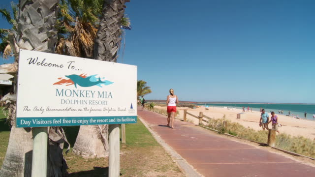 WS View of tourists at Monkey Mia resort / Shark Bay, Western Australia, Australia