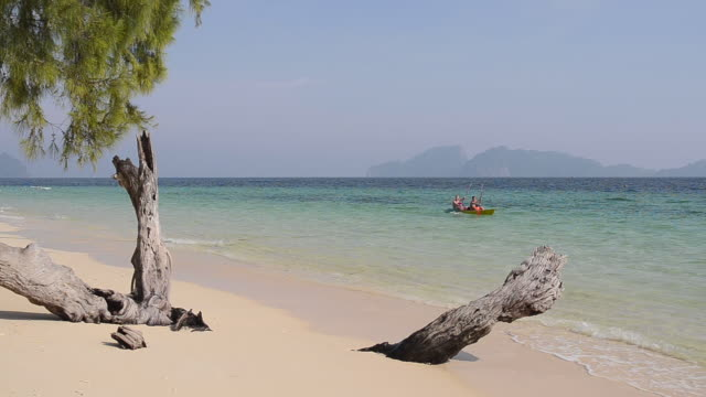 WS View of Tourists kayaking on see and drift wood is on sandy beach, hat chao mai marine national park / Ko Kradan, Trang, Thailand