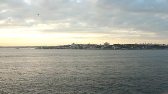 vídeos y material grabado en eventos de stock de ws view of town near ocean / istambul, turkey - grupo mediano de animales