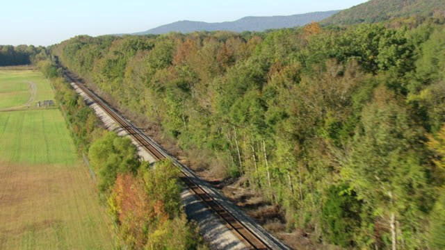 ws aerial view of tracking railroad tracks with dense forest on sides / scottsboro, alabama, united states - alabama stock-videos und b-roll-filmmaterial