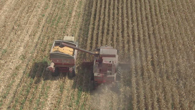 ws aerial ts zi zo view of tractor collecting grain cereals from farm field / santarem, portugal  - portugal stock videos & royalty-free footage