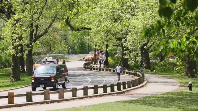 ws view of traffic of zigzag park road which surrounding by fresh green trees at central park / new york, united states  - zigzag stock videos & royalty-free footage