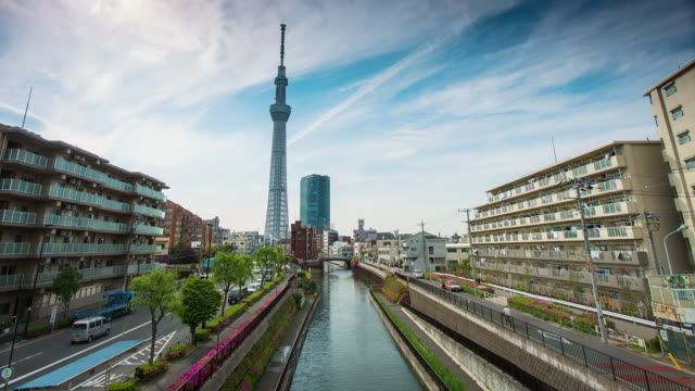 MS T/L View of tree communication tower and river with oshiage area / Tokyo, Japan