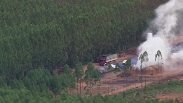 vidéos et rushes de ws aerial view of tree farm with smoke / brazil - véhicule utilitaire léger
