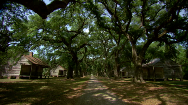 WS View of tree lined path next to old slave quarters / New Orleans, Louisiana, United States