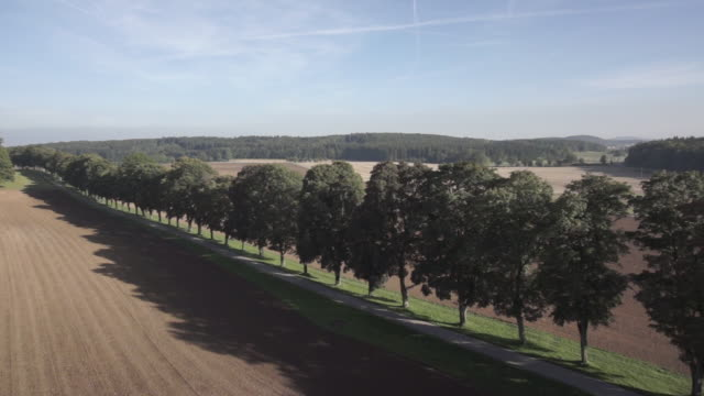 view of treelined on agricultural landscape - kraneinstellung stock-videos und b-roll-filmmaterial