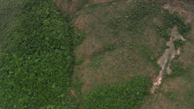 ws aerial view of trees and land / minas gerais, brazil - minas stock videos and b-roll footage