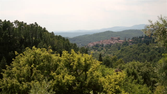 WS PAN View of trees and mountains / Callian, Provence Alpes Cote, France