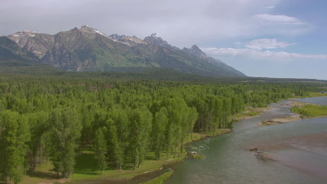 ws aerial view of trees near snake river and tetons mountains in grand teton national park / jackson wyoming united states - parco nazionale del grand teton video stock e b–roll