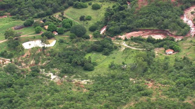 ws aerial view of trees with pond / minas gerais, brazil - minas stock videos and b-roll footage