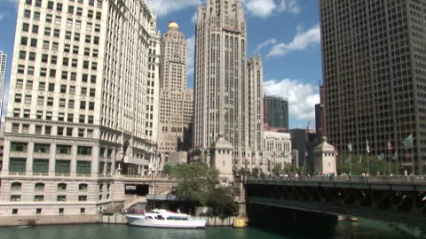view of tribune tower in chicago united states - torre del tribune video stock e b–roll