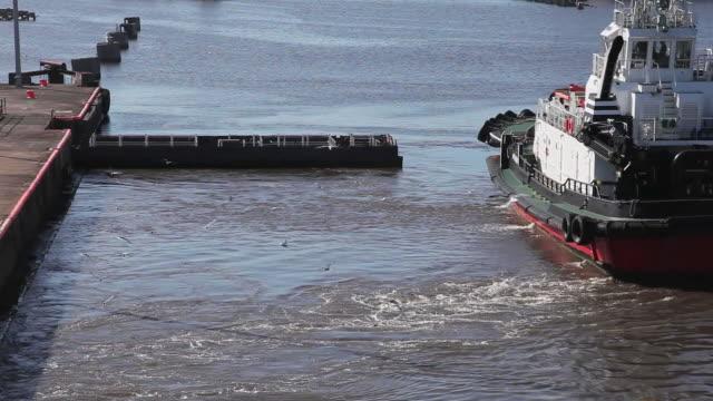 ws view of tugboat with birds and terns flying around boat / edinburgh, scotland - タグボート点の映像素材/bロール