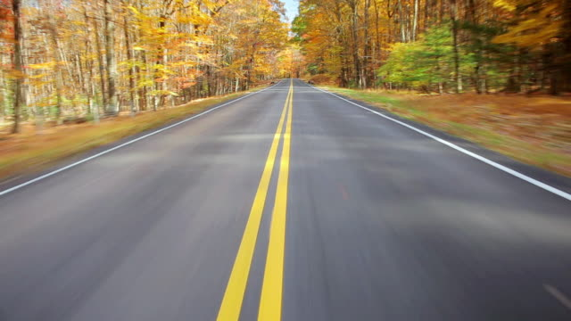 MS POV View of Two lane road through Autumn trees / West Hurley, New York, United States