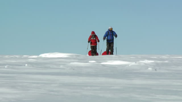 ws view of two people on skis pulling pack sleds across ice / south pole, antarctica - bastoncino da sci video stock e b–roll