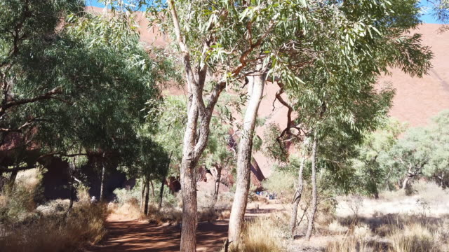 view of uluru august 13, 2019 in the uluru-kata tjuta national park, australia. the uluru-kata tjuta national park board decided unanimously that the... - エアーズロック点の映像素材/bロール