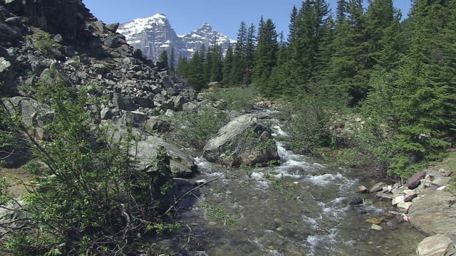 ms view of valley of ten peaks with small river in banff nationalpark / lake louise, alberta, canada - valley of the ten peaks stock videos and b-roll footage