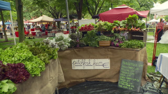 ms pan view of vegetable stand at farmer's market / burlington, vermont, usa  - burlington vermont stock videos & royalty-free footage