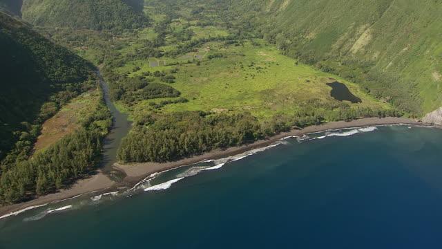ws ds aerial view of vegetation and water of waipio valley on big island / hawaii, united states - ハワイ島点の映像素材/bロール