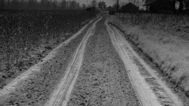 ms pov view of vehicle driving through cotton fields in mississippi - track imprint stock videos and b-roll footage