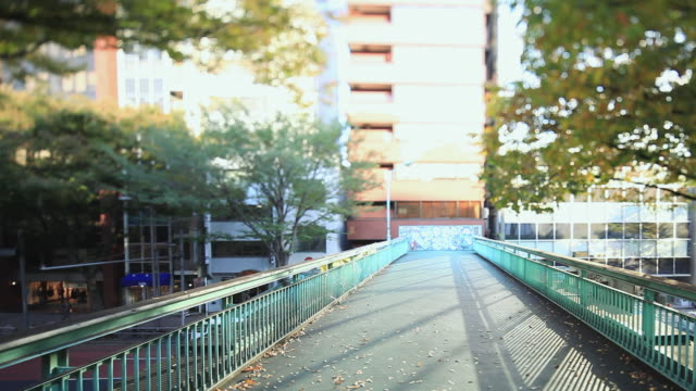 ms view of viaduct with fallen leaves / shibuya, tokyo, japan - 不在点の映像素材/bロール