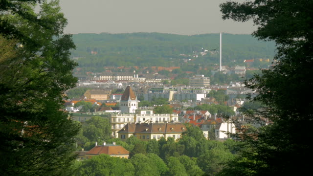 View of Vienna through trees.Schloss Schonbruun