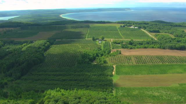 vídeos y material grabado en eventos de stock de ms aerial tu view of vineyards and farms at leelanau peninsula to reveal lake michigan / michigan, united state - paisaje mosaico