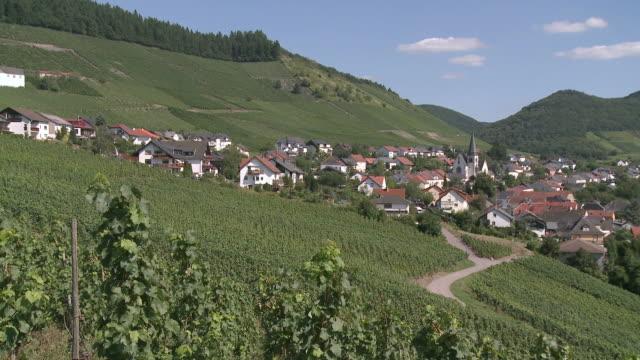 ws view of vineyards and village ockfen near saarburg / ockfen, saar-valley, rhineland- palatinate, germany - saarburg stock-videos und b-roll-filmmaterial